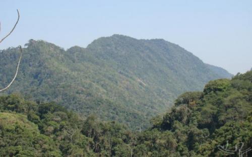 Parque Estadual Turístico do Alto Ribeira, onde está o quilombo de Bombas.